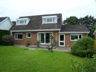2 bed Detached Bungalow in Penrhiwgaled Lane...