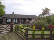 Detached Bungalow for sale in Maesymeillion Llandysul...