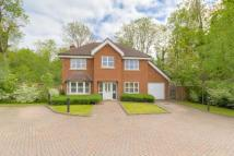 Detached home for sale in Denewood Mews, Watford...
