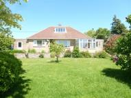 Bungalow to rent in Botany, Highworth...
