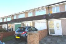 Alma Terraced property to rent