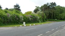 Land in Common Road, Westbourne for sale