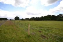 Equestrian Facility house for sale in Rake Road, Liss