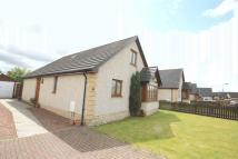 Detached property for sale in Baillie Avenue, Shotts