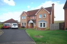 Detached Villa in Wellview Lane, Murieston...