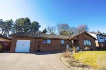 Bungalow in Duncan Green, Deer Park...