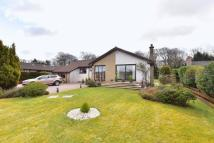 Detached Bungalow in Northwood Park, Deans...