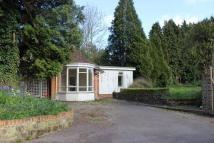 Bungalow for sale in Midhurst, West Sussex