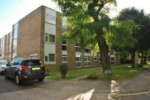 Flat Share in Wycombe Court...
