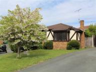 Detached Bungalow for sale in Derwen, Lodgevale Park...