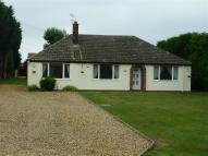 3 bed Bungalow to rent in Drift Road, Lakenheath...