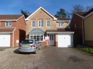 Masefield Mews house to rent