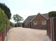3 bed Detached Bungalow in Seel Court, Hessle...