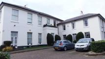 Apartment to rent in The Cedars, Woodthorpe...