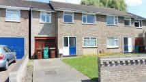 5 bed Terraced house to rent in PERFECT FOR PROFESSIONAL...