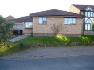 3 bedroom Detached Bungalow in Bishopdale Court...