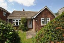 2 bed Detached Bungalow for sale in Queen Street, Bottesford...