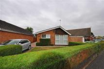 Detached Bungalow to rent in Bowbridge Gardens...