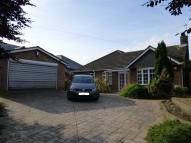 Detached Bungalow in Hull Road, Skirlaugh...
