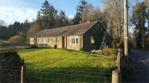 Semi-Detached Bungalow in Hawick, Scottish Borders