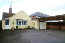 Bungalow for sale in Forest Road, Narborough...