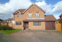 Detached home for sale in Alice Gardens, Whetstone...