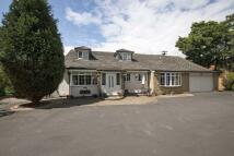 6 bed Bungalow for sale in Fairmoor...