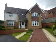4 bed Detached home to rent in Roundhill Close...
