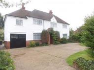 Detached home in Bromham Road, Bedford...