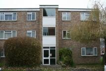 Apartment to rent in Alpine Court, KENILWORTH