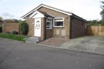 Bungalow to rent in Basildon