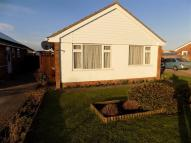 Bungalow to rent in Golding Road, EASTBOURNE