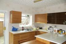 Haldane house to rent