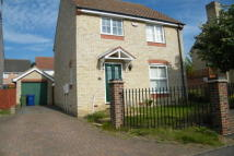 house to rent in Grifon Road...