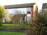 2 bedroom semi detached property to rent in Matthews Road, TAUNTON