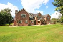 Detached house for sale in HEARNS LANE, Faddiley...