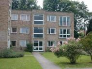 Ground Flat to rent in Riseley Road, Maidenhead...
