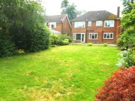 Detached home to rent in The Beeches, TRING