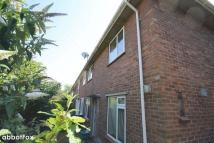 Detached house to rent in Wilberforce Road, Norwich