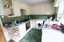 2 bedroom semi detached property to rent in Wordsworth Drive, Dereham