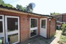 property to rent in Yarmouth Road, Norwich