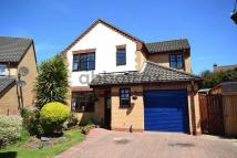 Detached house in Taverham, Norwich, NR8