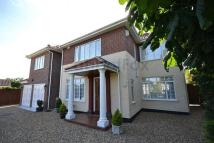 Detached property in Attleborough, Norwich...