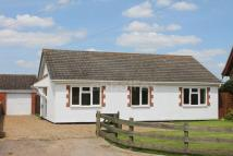 3 bed Detached Bungalow in Hingham, NR9