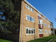 Studio flat in Thurling Plain, Norwich