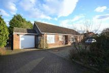 Bracon Ash Detached Bungalow for sale