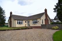 Detached Bungalow in Blofield, Norwich, NR13