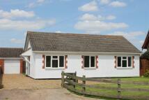 Detached Bungalow in Hingham, Norwich, NR9