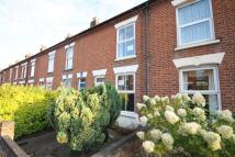 Wodehouse Street Terraced property to rent