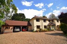5 bedroom Detached property for sale in Horning, Norwich, NR12